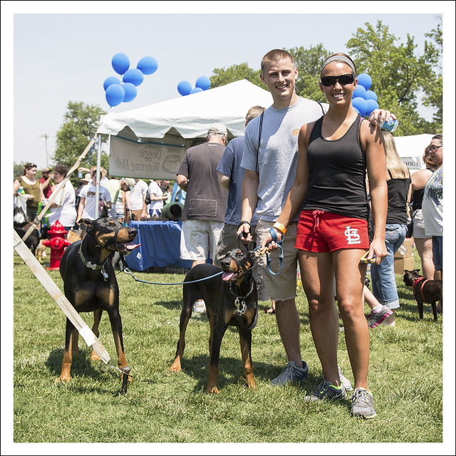 Bark In The Park 6