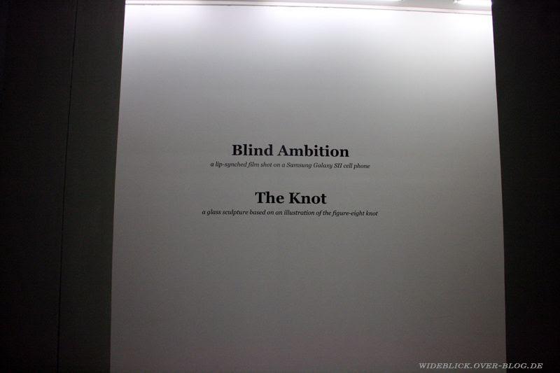 knoten documenta13 d13 kassel 2012 wideblick.over-blog.de