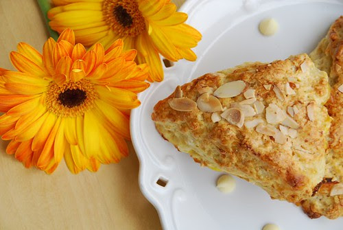 apricot, ginger, and white chocolate scones