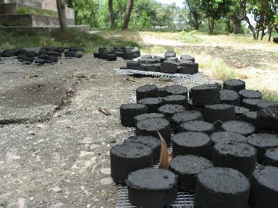 sugarcane charcoal01.jpg