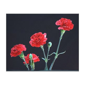 red carnations wrapped canvas stretched canvas print
