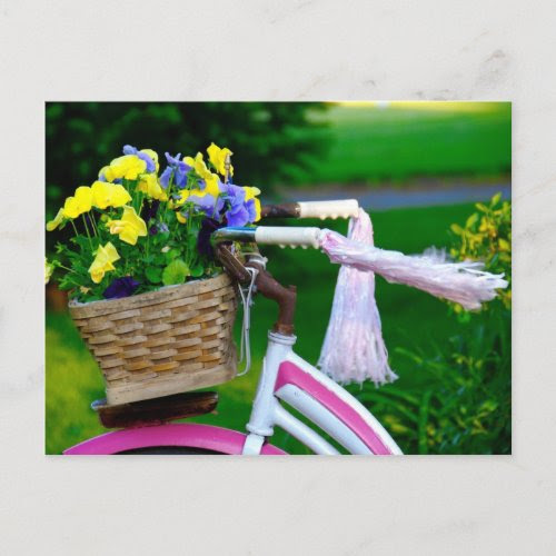 Girls Just Wanna Have Fun, Pink Girls Bicycle postcard