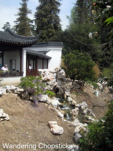 The Huntington Library, Art Collections, and Botanical Gardens (Chinese Garden) (Spring) - San Marino 12