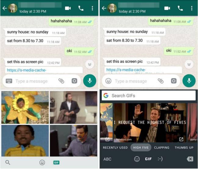 GIF GBoard WhatsApp