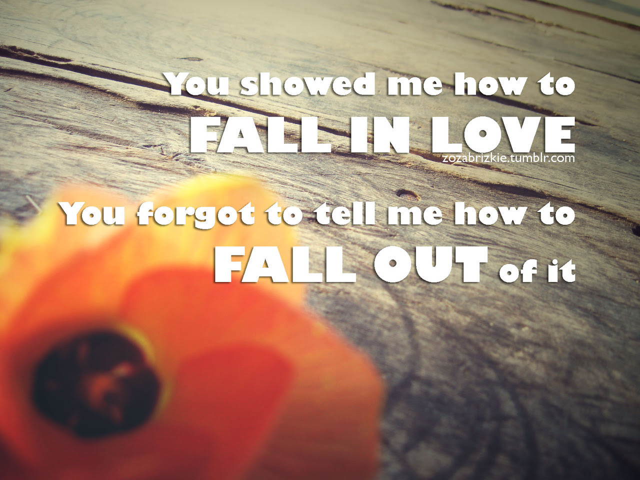 You Showed Me How To Fail In Love Break Up Quote Quotespicturescom