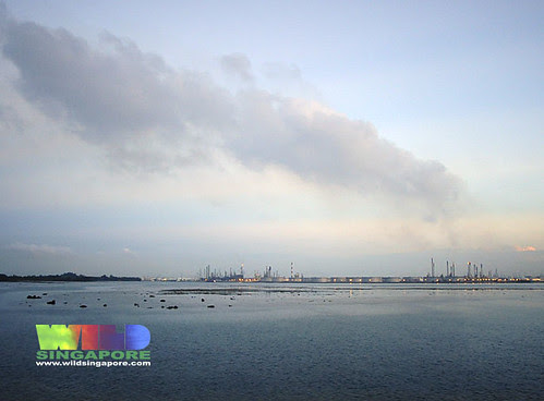 Petrochemical plants on Pulau Bukom