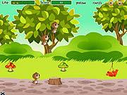 Jogar Family of squirrels Jogos