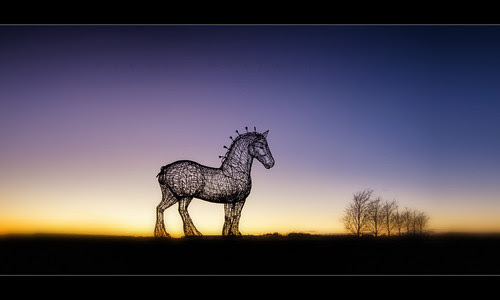Clydesdale by scott masterton