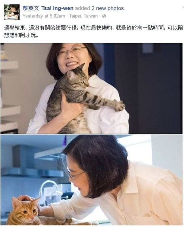 Facebook photo of Tsai-Ing wen with her cats