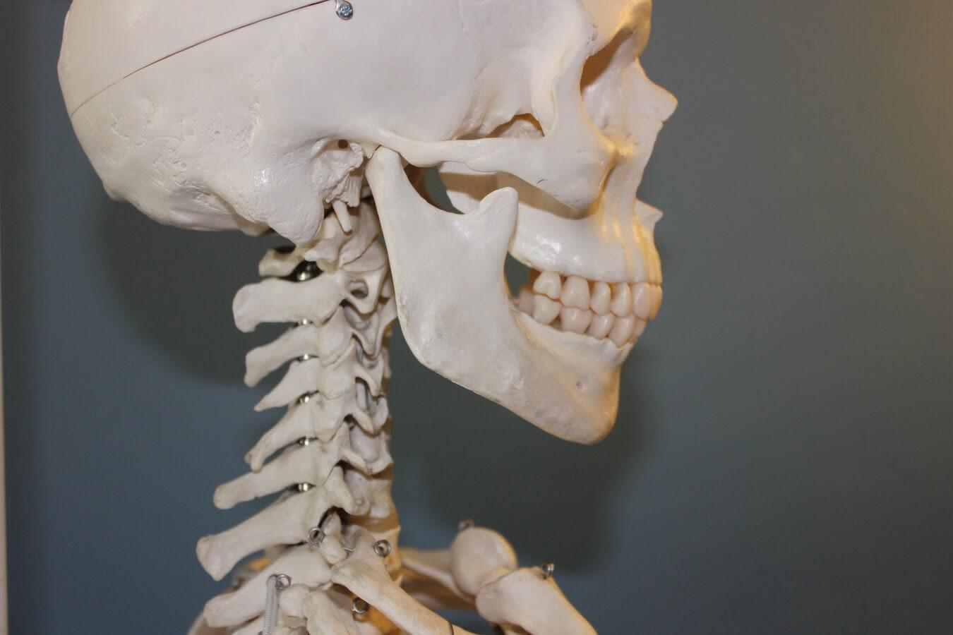 Essential Insights on Temporomandibular Joint Disorder ...
