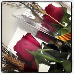#santjordi2013 Les roses de les dones de casa