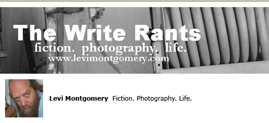 levi montgomery self-publishing blogs fiction writing