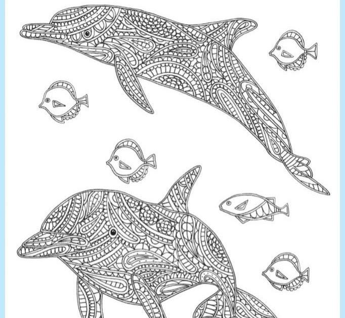 malvorlagen delfin download  aiquruguay
