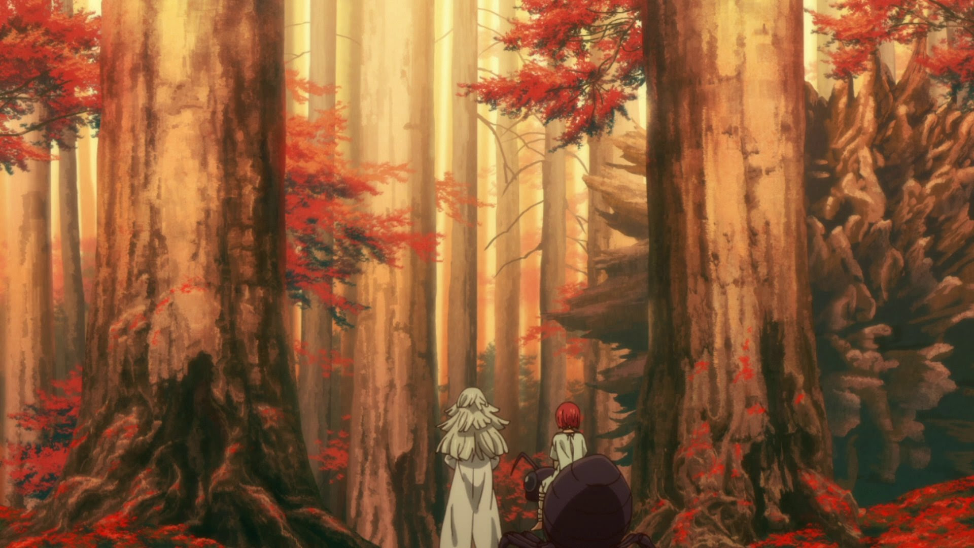 Myreviewer Com Jpeg Image For The Ancient Magus Bride Part Two