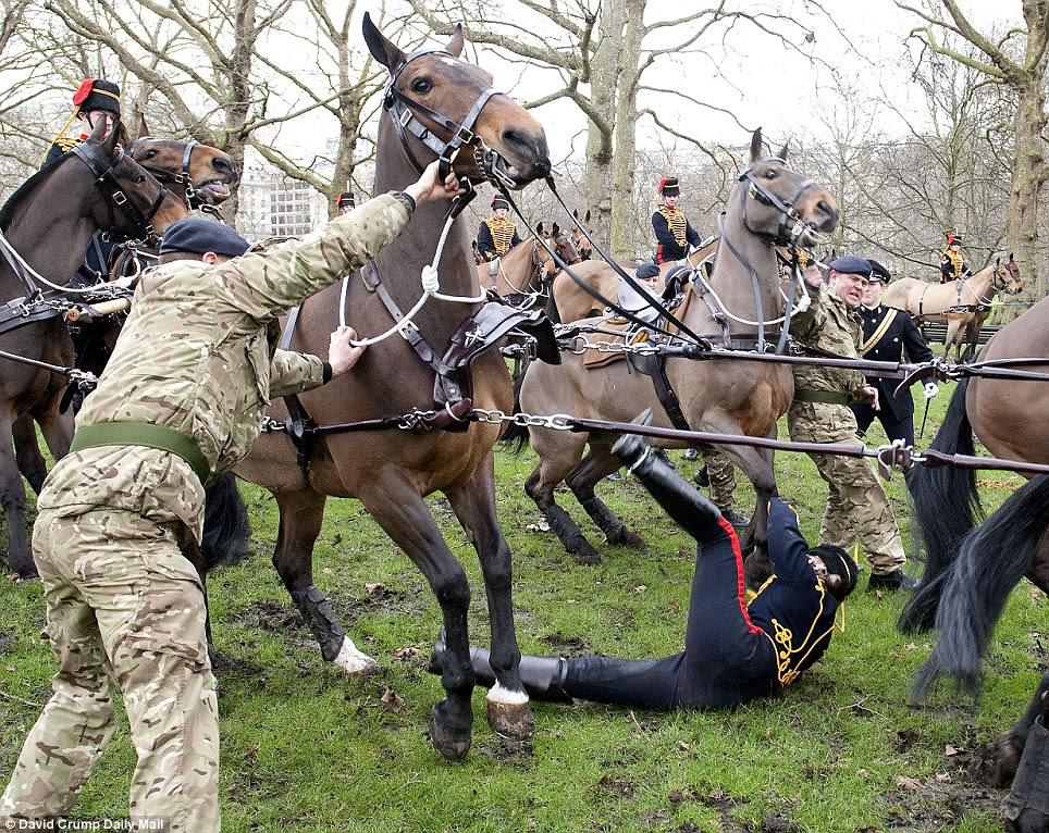 The horse grew more and more nervous at each passing roar of the cannon before it could take no more and threw the woman