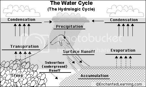 Collection of Hydrologic Cycle Worksheet - Sharebrowse