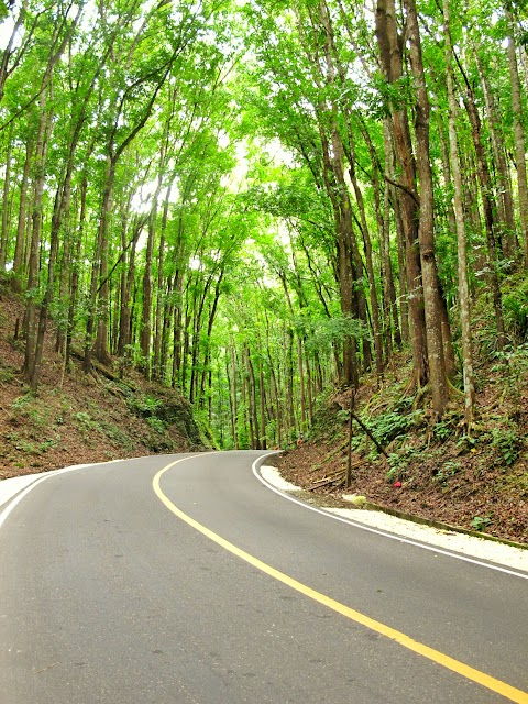 T&J Travels #3: Bohol 2015 (Part 2)