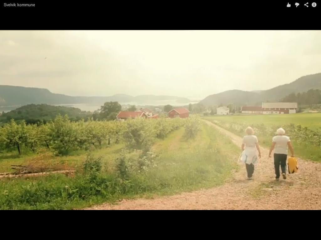 svelvik kommune youtube