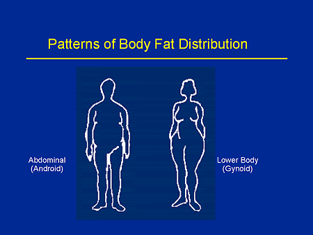 lowest body fat percentage female
