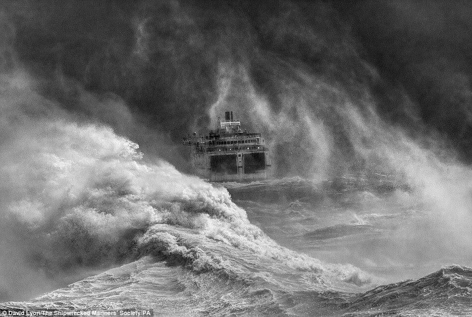 David Lyon venceu a competição com sua fotografia ironicamente chamado Dia agradável para um cruzeiro, tomada em Newhaven, East Sussex, retratando o ataque de grandes ondas quebrando no caminho de uma balsa
