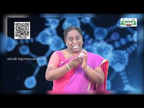 11th Bio Chemistry நொதிகள் அலகு 3 பகுதி 2 Kalvi TV