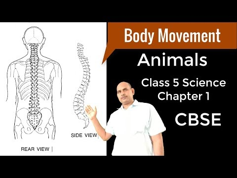 Science Class 5 Chapter 1 - Animals : Body Movements (Q & A)