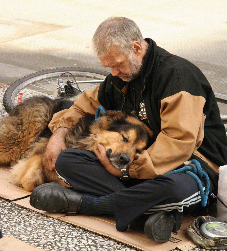 homeless-dogs-and-owners-32