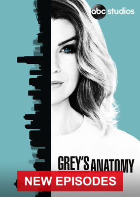 Grey's Anatomy - Season 13
