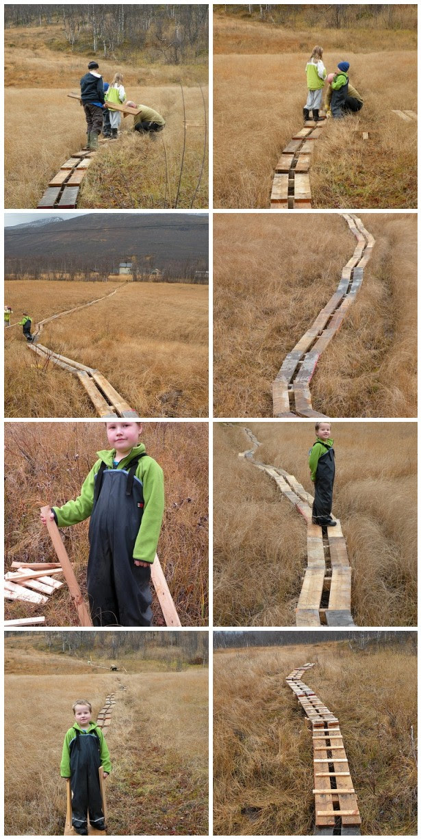 making a path of pallets over the bog