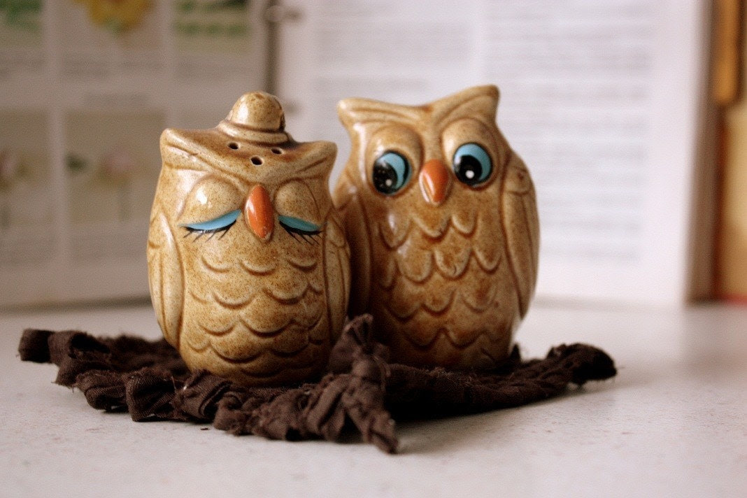 Lovely Owls Salt and Pepper Shakers
