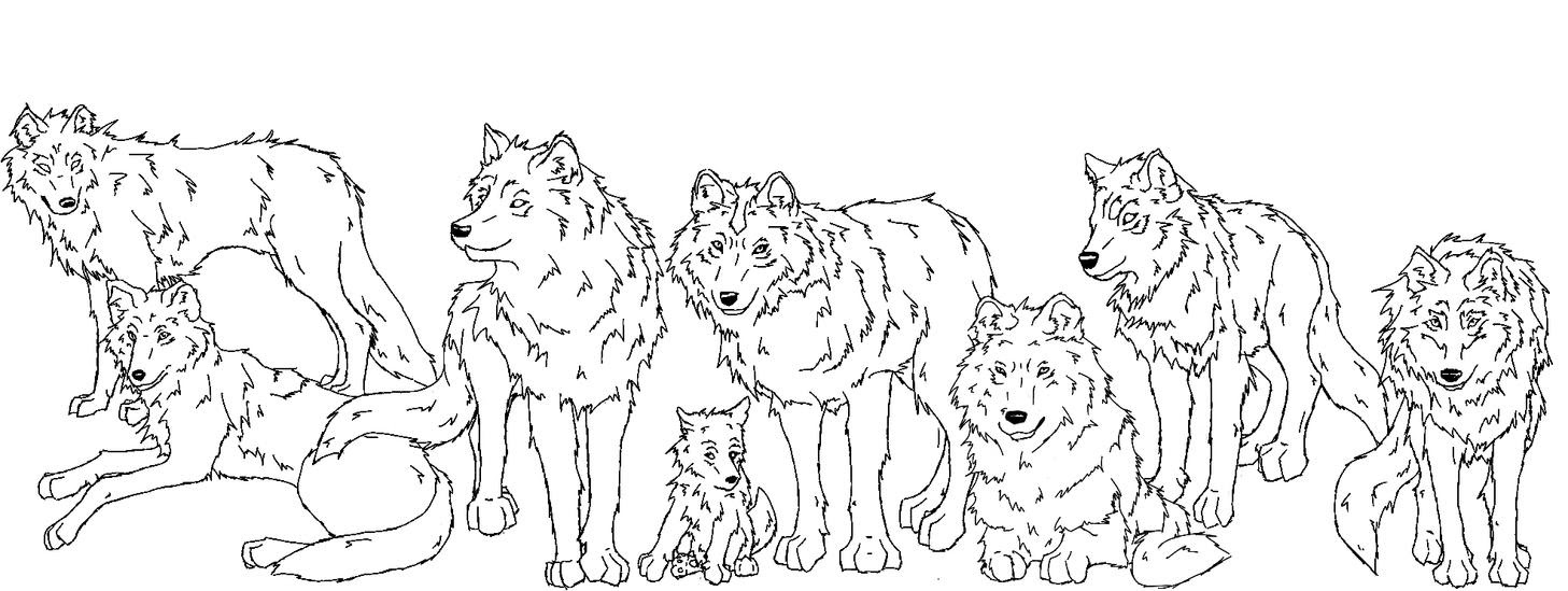 Wolf Pack Hunting Coloring Pages Coloring Pages