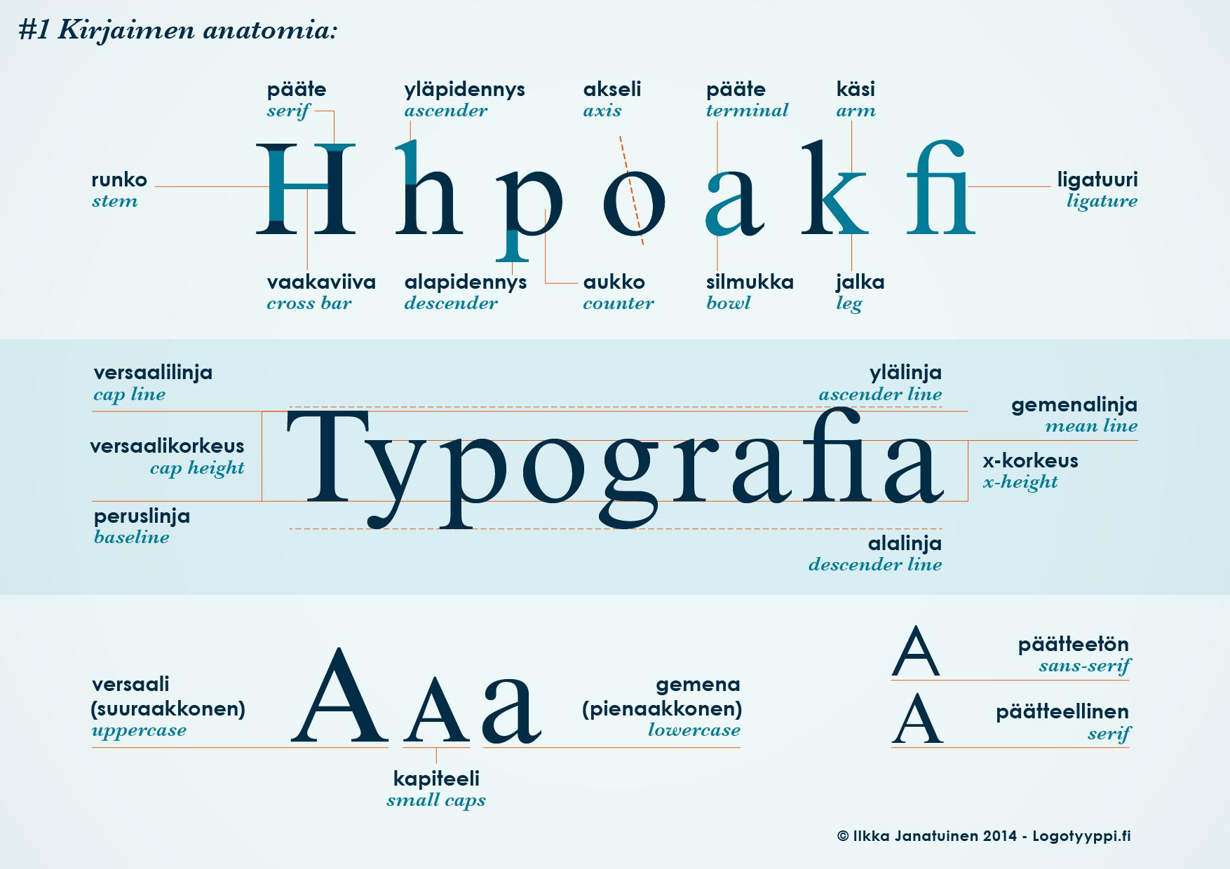 Kuvassa näkyy erilaiset kirjasintyypit, kirjasinkoot, x-korkeus sekä erilaisten ylä- ja alalinjojen sekä päätteiden määritykset kirjasimissa. Lisäksi versaali, kapiteeli, gemena, serif ja sans-serif on esitetty kirjainten avulla.