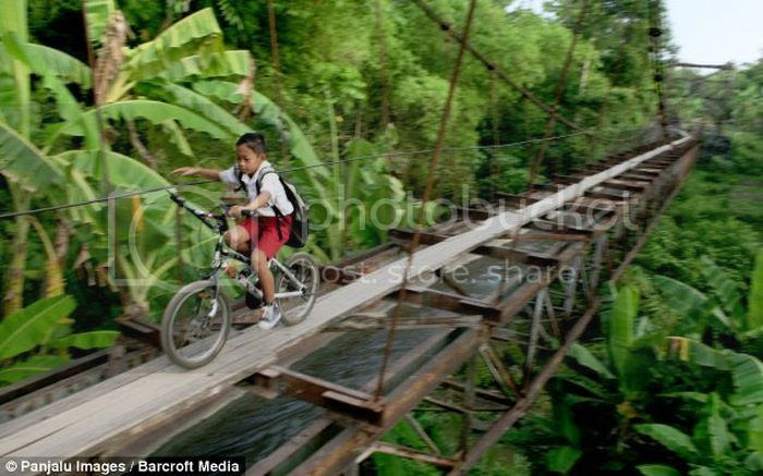 > Dangerous Path to School - Photo posted in Wild videos, news, and other media | Sign in and leave a comment below!
