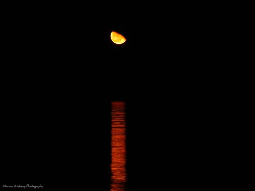 Moonrise over Lake Michigan in Chicago 11.07.2009