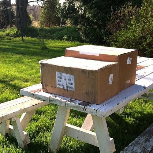 Aroooooo! Those boxes hold some precious cargo.