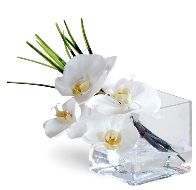 Phalaenopsis Orchid White Flower Arrangement  Traditional  Artificial Flowers Plants And Trees