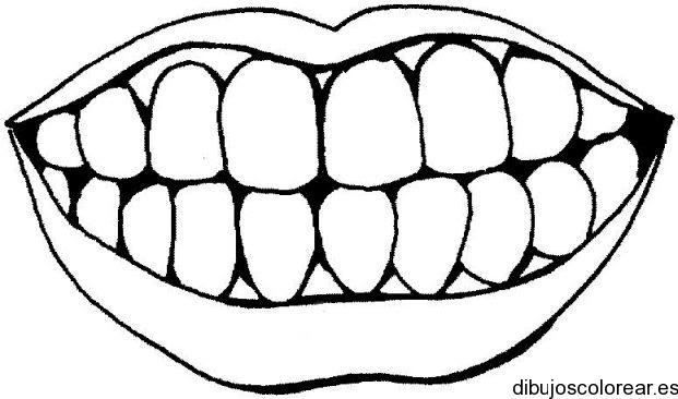 Dibujo De Una Sonrisa Con Dientes