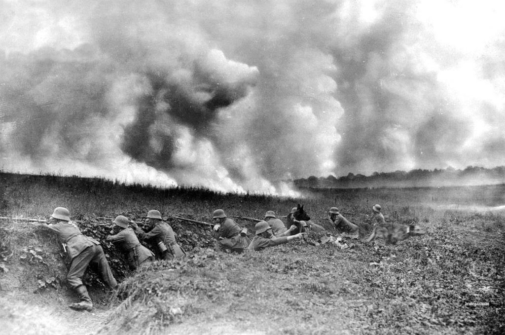 Os animais também lutaram na Primeira Guerra Mundial 02
