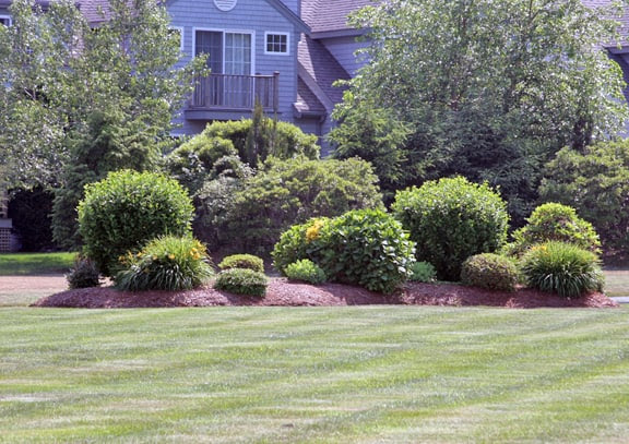 Landscaping Berms and Mounds