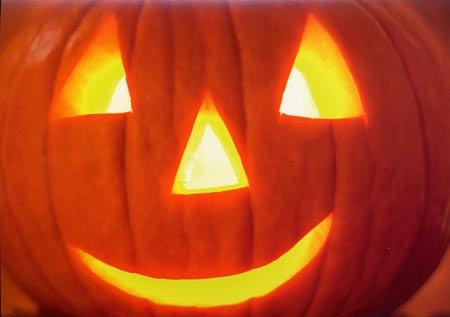 Pumpkins Jack Olantern 100 Days American Seed Co