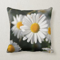 Spring Daisies Pillow