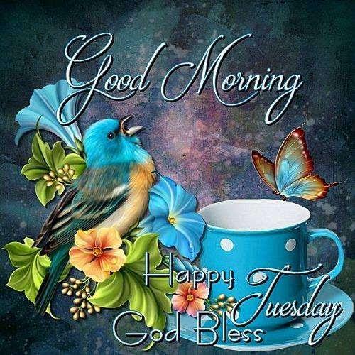 God Bless Happy Tuesday Goodmorningpicscom