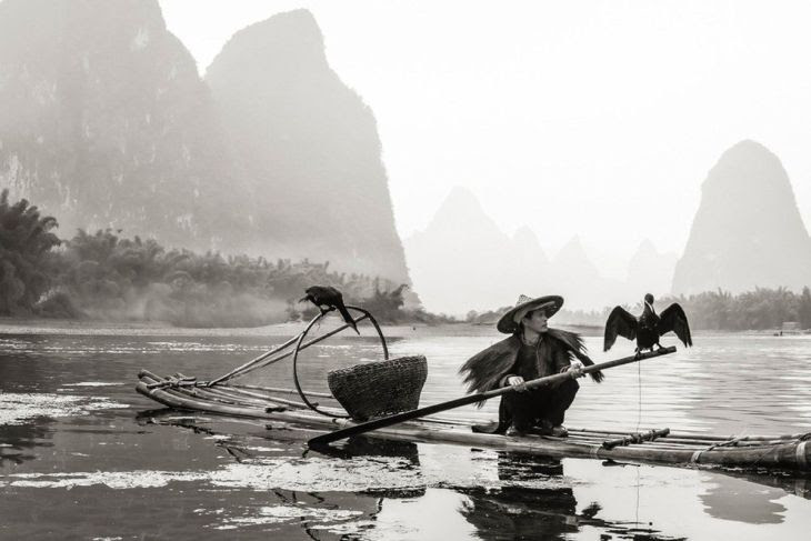 grand-prize-this-cormorant-fisherman-uses-trained-birds-to-fish-in-the-river-for-him-he-is-also-a-local-tour-guide