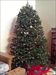 Christmas tree in progress