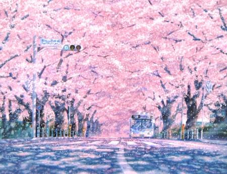 Sakura Street Other Anime Background Wallpapers On Desktop Nexus