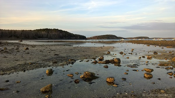 late day light from the exposed sandbar path to Bar Island