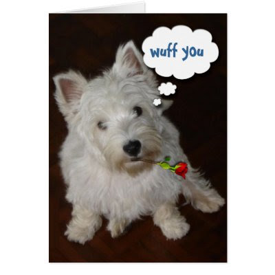 Wuff You - Happy Valentine's Day Card