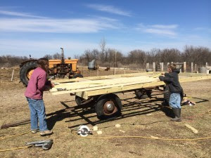 """We laid out the floor with our 2x4 joists and then placed the 3/4"""" treated plywood on for the floor."""