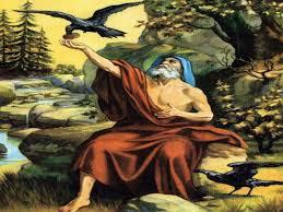Image Result For Elijah And Ravens