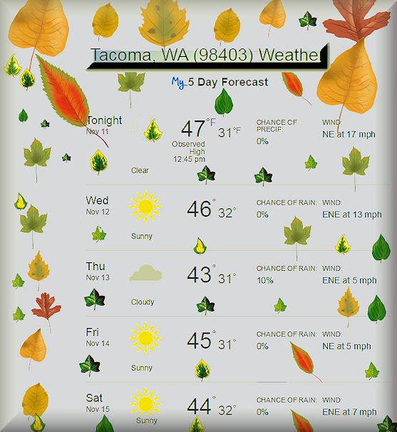 1000+ ideas about 5 Day Weather Forecast on Pinterest | Weather ...